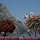 Lake Garda - Limone by imagic