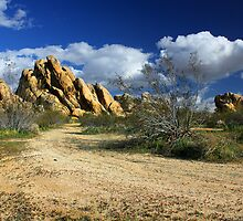 Boulders At Apple Valley by James Eddy