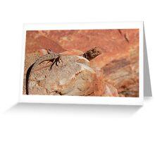 A Lizard Greeting Card