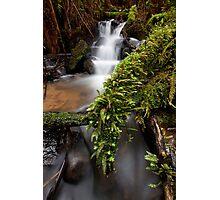 Wonwondah Falls Photographic Print