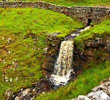 Dales Waterfall by Trevor Kersley