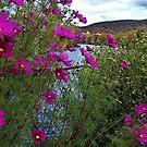 Garden on the Bridge of Flowers by Nancy Richard