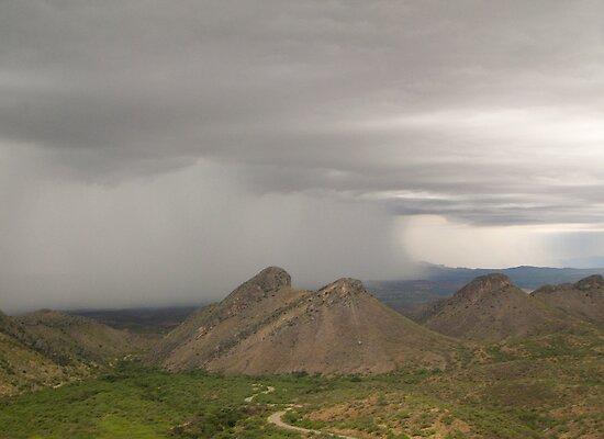 Desert Monsoon Storm by Lucinda Walter