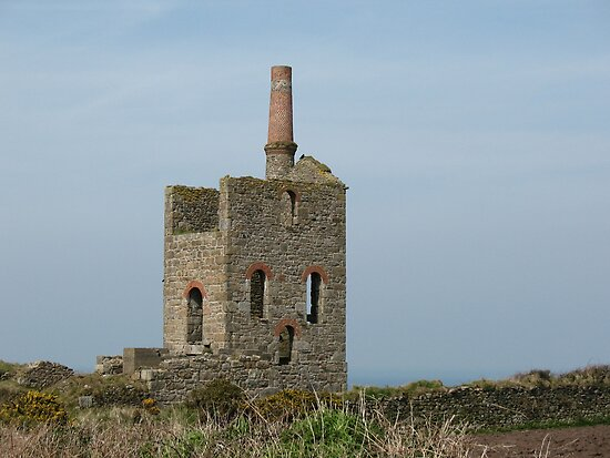 Cornish Tin Mine (5938) by Tony Payne