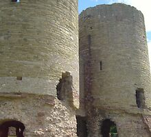 Rhuddlan Castle by Joanne Read