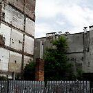vacant block by BrainCandy