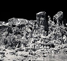 MonoLake  2 by Phillip M. Burrow
