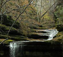Upper La Salle Waterfall by soyrwoo