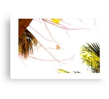 Trees DXVI Canvas Print