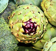 Artichoke by MarthaBurns