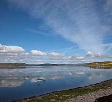 Moray Firth From Allanfearn by SteveMG