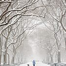 Winter in Central Park by Ellen McKnight