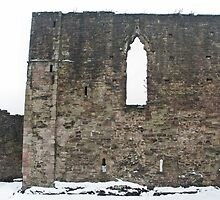 Monmouth Castle Wall 1 by missmoneypenny