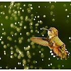 PLAYING IN THE RAIN.............TINY BUBBLES ...F by RoseMarie747
