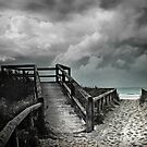 cabarita beach by carol brandt