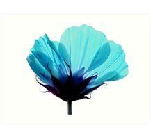 A Hue of Blue Art Print
