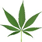 Cannabis leaf vector by robertosch