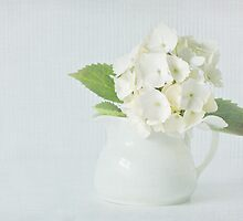 Little white jug by inkedsandra