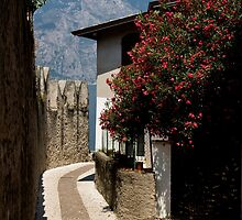 Lake Garda - Malcesine Street by imagic