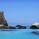 Seal Rocks-Catalina Island-California-USA by Bellavista2
