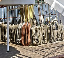 Ropes of sailing Vessel - Antwerp - Belgium by Gilberte