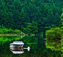 Reflected boat, River Barrow, St Mullins, County Carlow, Ireland by Andrew Jones