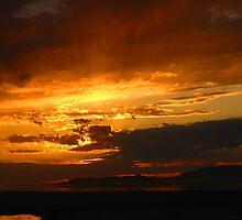 Sunset at  Antelope Island. by JoAnn Glennie