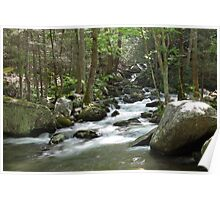 Cosby Creek Poster