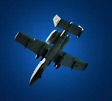 A-10 Thunderbolt II by tuffcookie