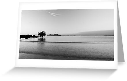 Dunk Island view , black and white by Susan Kelly