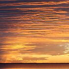 Sunset, Coral Bay, Western Australia by ladieslounge