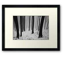 A land of contrasts Framed Print
