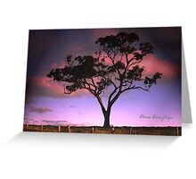 Solitree Greeting Card