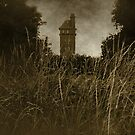 West Park - The Tower by Richard Pitman