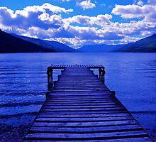 Feeling Blue by Jim Wilson