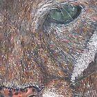 Puma by Woodbine252