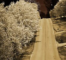 Lost Highway by Roger Jewell