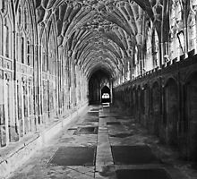 Gloucester Cathedral by Gillian  Ford