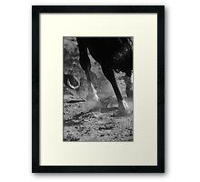 Horse 0916 Framed Print