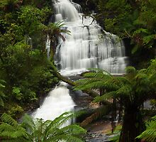 Triplet falls - Otway ranges by Tony Middleton