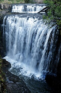 "photoj Tasmania, North, ""Guild Falls"" by photoj"