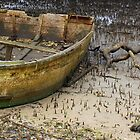 Low Tide !! by Trish Threlfall