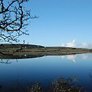 Carran Lake By Reflections Co Clare Ireland by Sean  Carroll