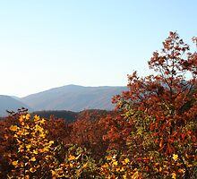 Breathtaking View of the Smoky Mountains by Missy Yoder