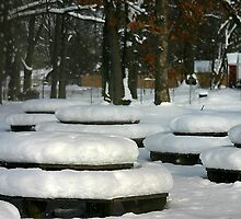 park tables after snow storm by wolf6249107