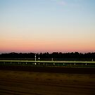 Sunset on the Track by Ashley Frechette