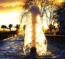 Sunlit Fountain by Rob Hawkins