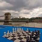 Buda & Pest, 2010, 36 by Priscilla Turner