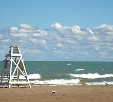 Windy Day at Lake Michigan Waterfront by Lauranette