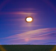 Full moon over the crop field by Gabor Pozsgai